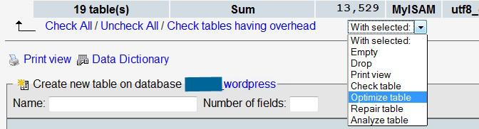 WordPress performance optimization - Richard Smaizys